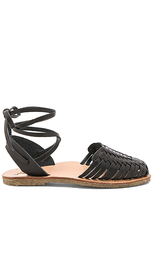 The Parakeet Sandal