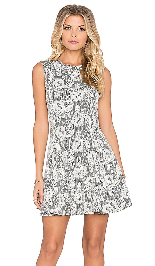 Bishop + Young Lace Skater Dress in Gray