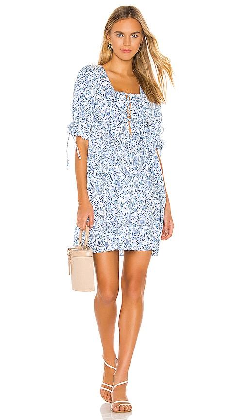 Jardin Mini Dress