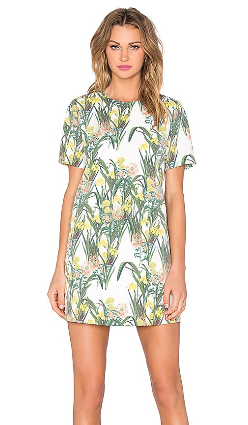 BLAQUE LABEL Floral Print Shift Dress in White