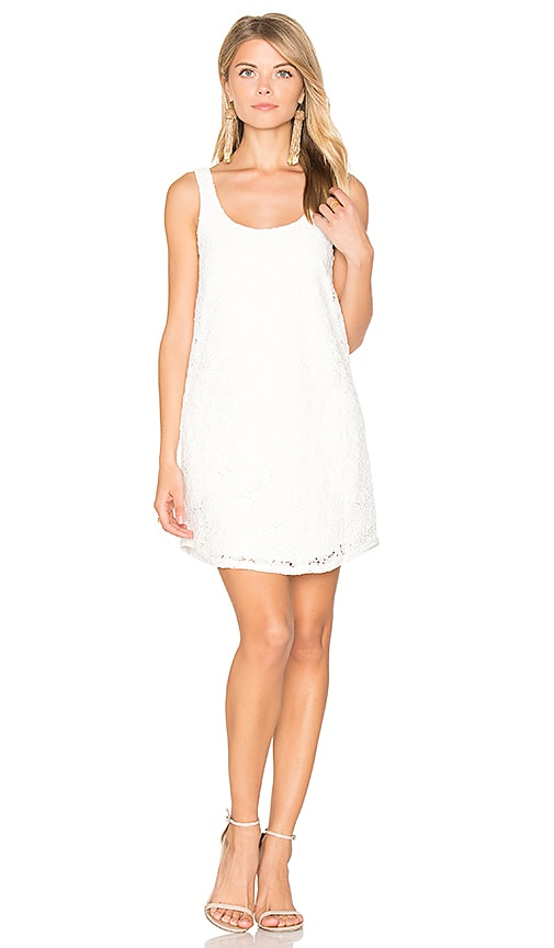 BLAQUE LABEL Lace Mini Dress in White