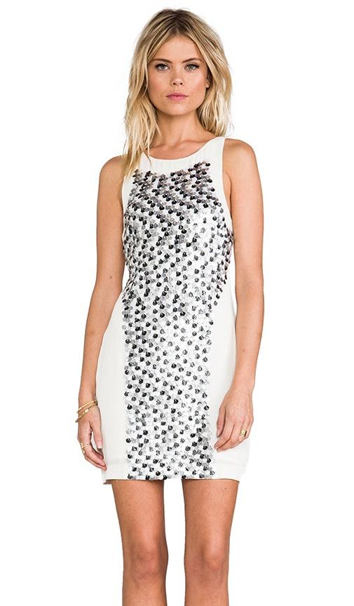 Fleck Dress