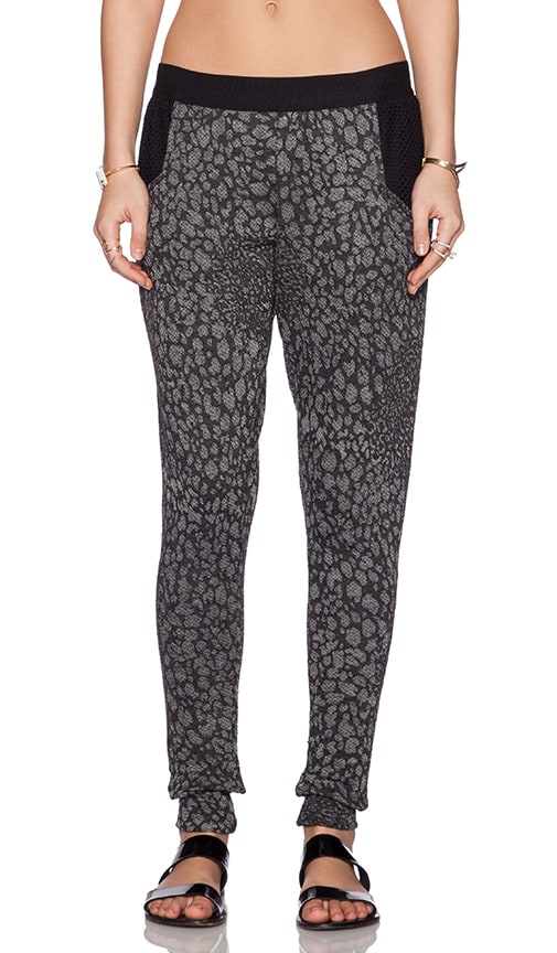 Blue Life Fit Cheetah Mesh Sweatpant in Black