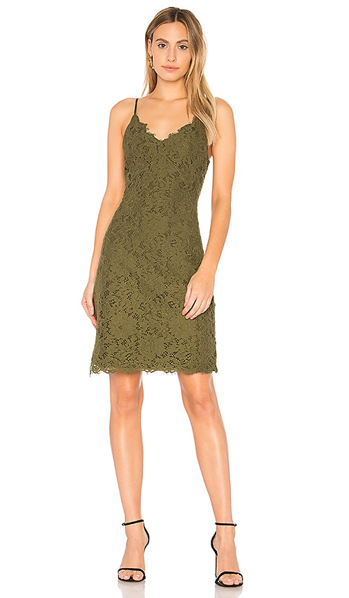Bobi BLACK Botanical Dress in Green