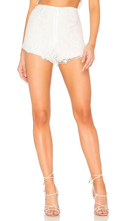 Dahlia Shorts