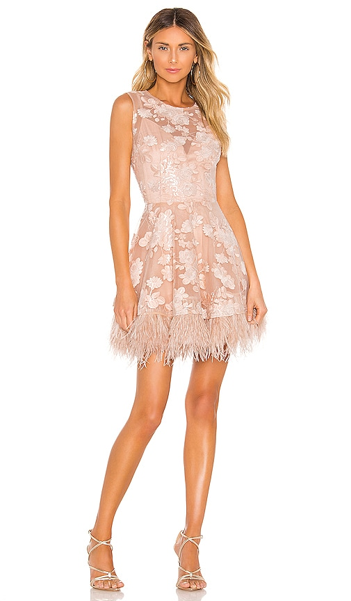 Viola Feather Dress by Bronx And Banco