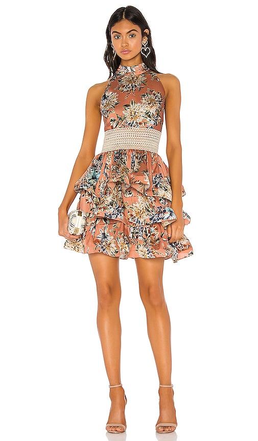 Bronty Mini Dress
