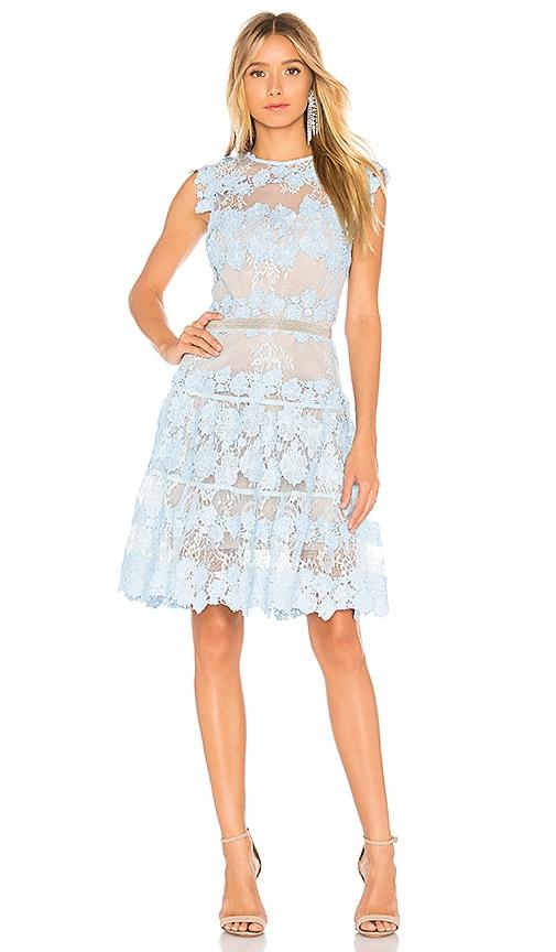 Flamenco Mini Dress