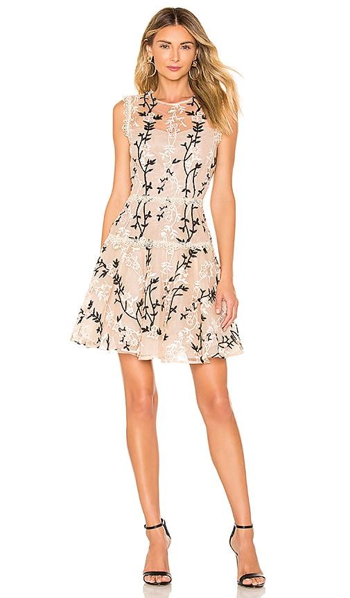 Cloe Mini Dress