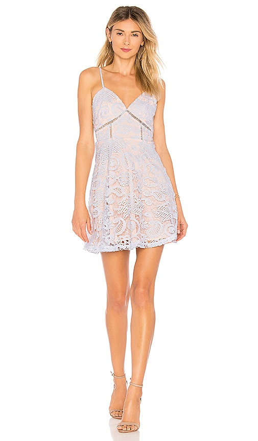 Maci Lace Skater Dress