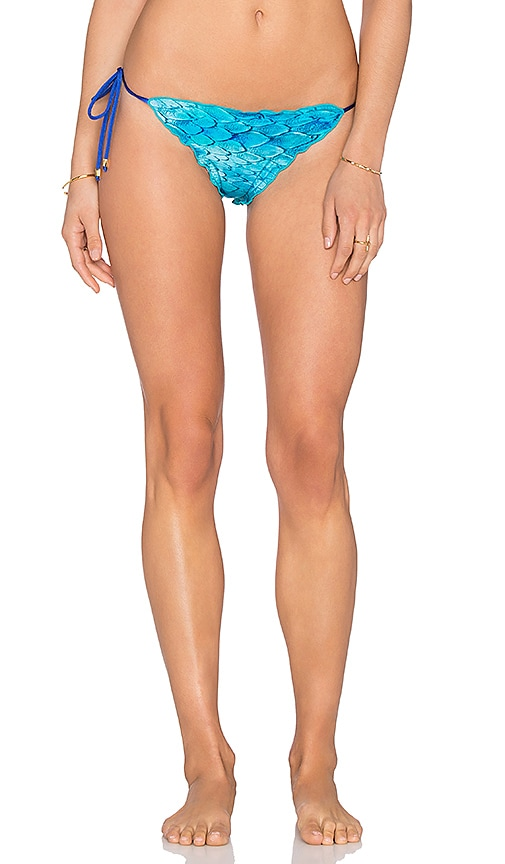 Caffe Feather Print Side Tie Bikini Bottom in Blue