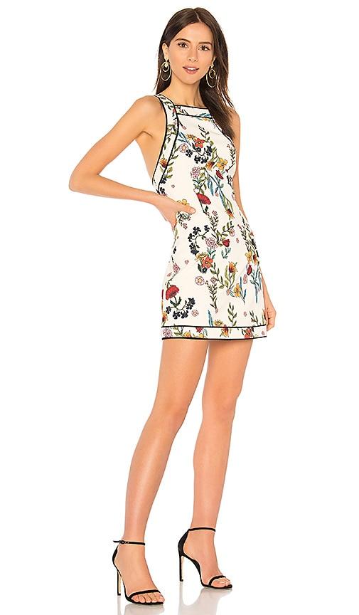 C/MEO Entitle Dress in Cream