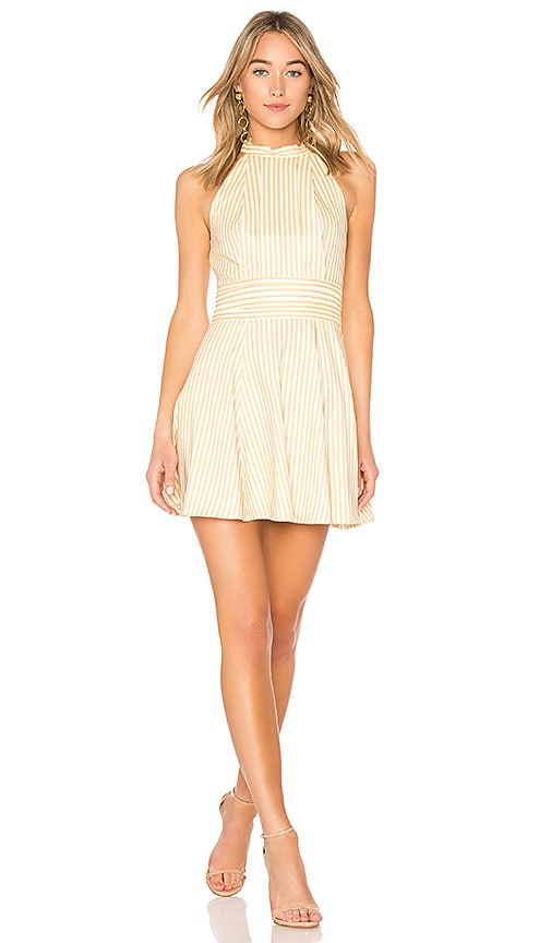 C/MEO Believe In Me Dress in Yellow