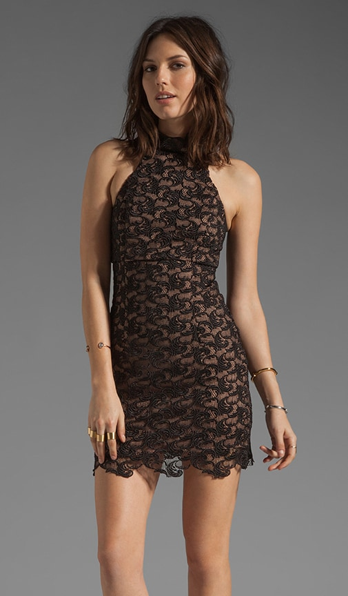 Light and Shade Paneled Lace Dress
