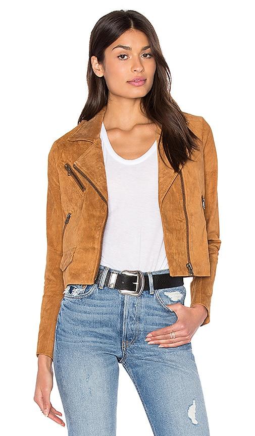 Stella Moto Jacket