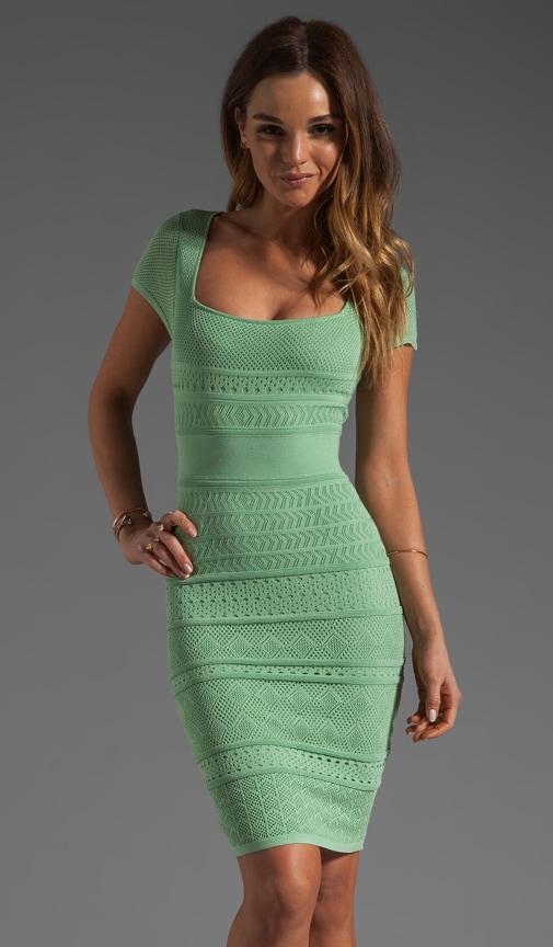 Short Sleeve Pointelle Dress
