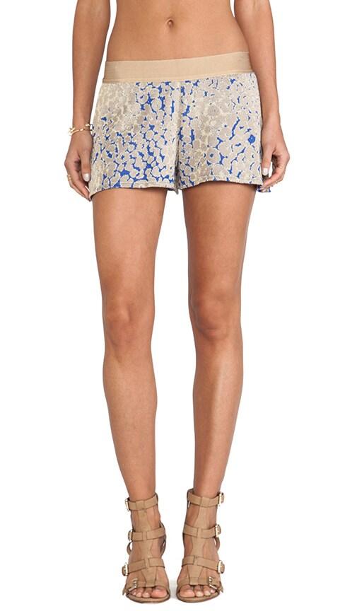 Onca Animal Print Shorts