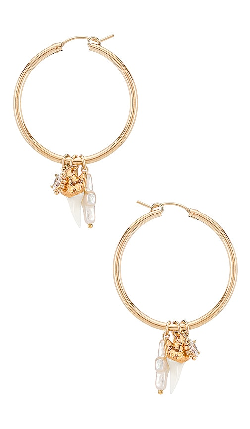 Martello Shark Hoop Earrings