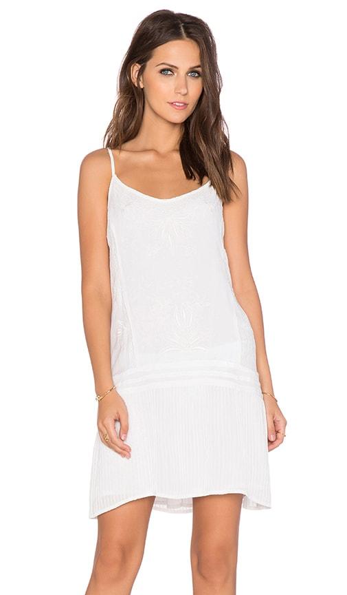 Mid Summer Night's Dream Dress