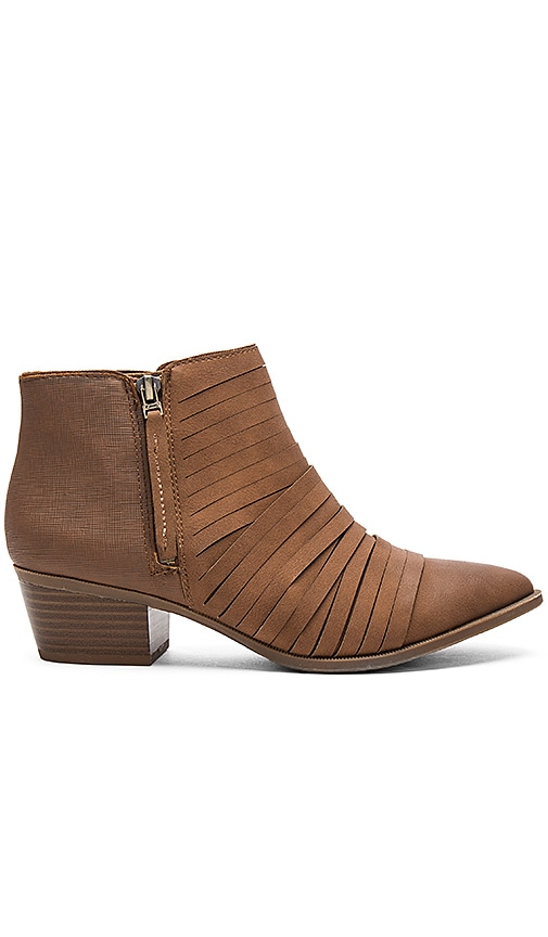 Circus by Sam Edelman Holden Bootie in Brown