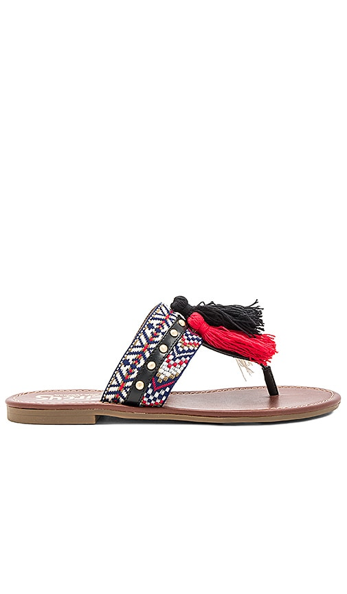 Circus by Sam Edelman Brice Sandal in Black