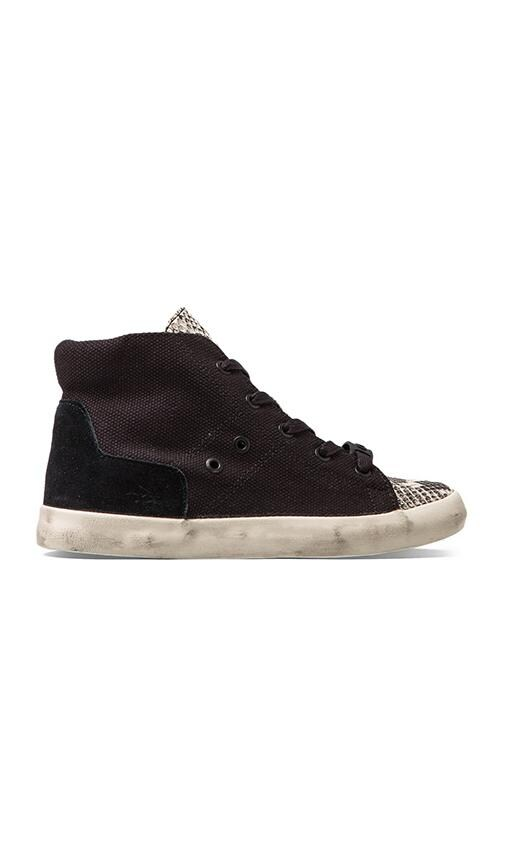 Talia Sneaker
