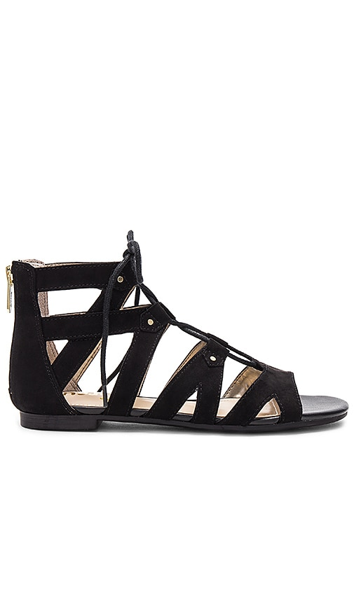 Circus by Sam Edelman Hagan Sandal in Black