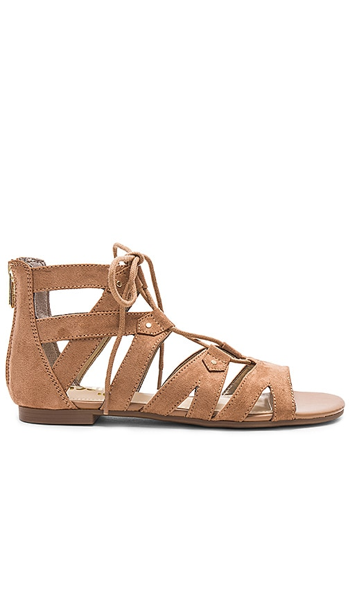 Circus by Sam Edelman Hagan Sandal in Brown