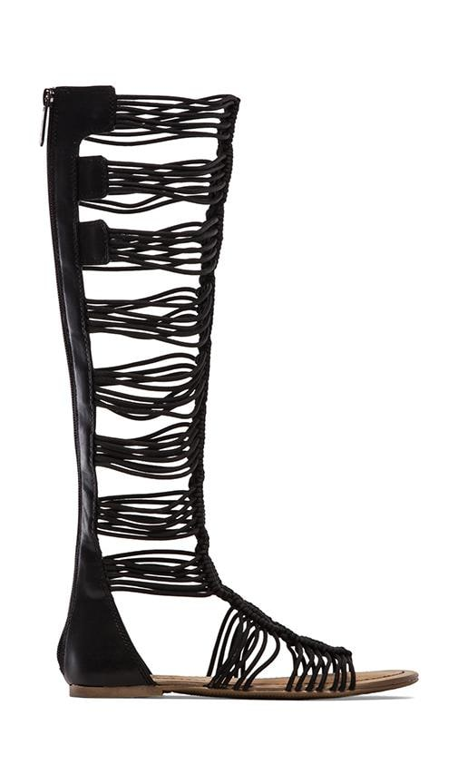 6c3ee8e6f9d Badger Gladiator. Badger Gladiator. Circus by Sam Edelman