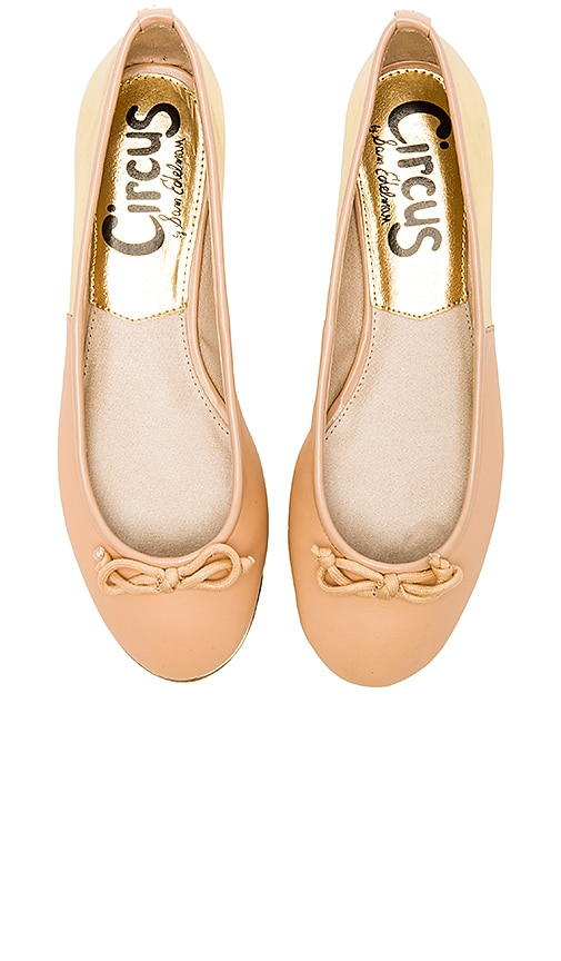 100ab699ca9822 Circus by Sam Edelman Banks Flat in Latte   Gold Flash