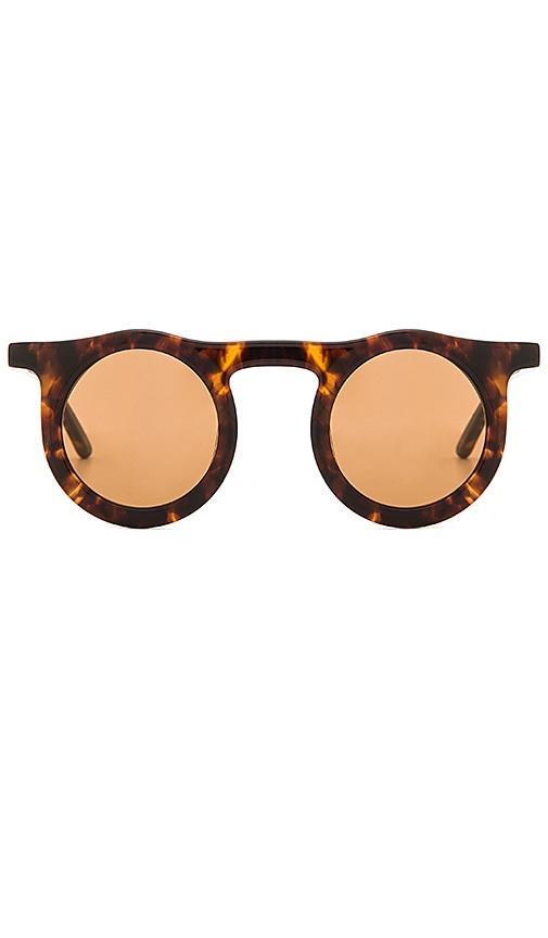 Carla Colour Lind Sunglasses in Brown