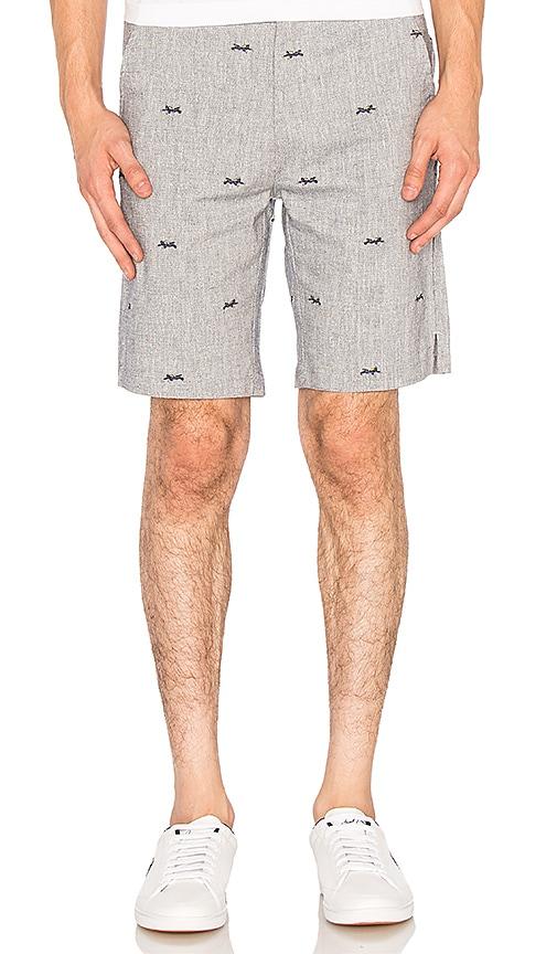 Diver Shorts