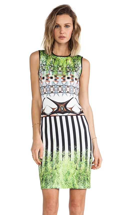 Huntington Gardens Neoprene Dress
