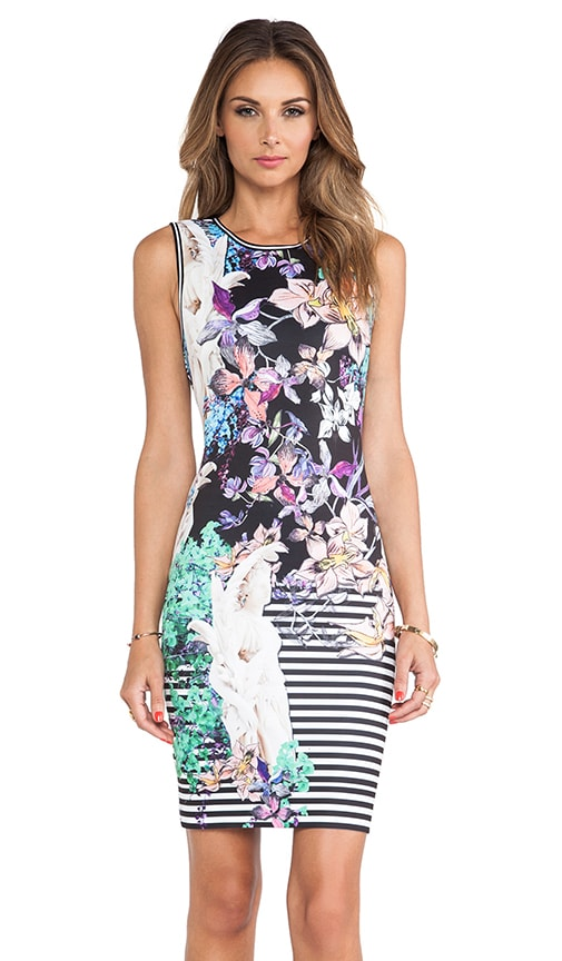 Enchanted Garden Neoprene Dress