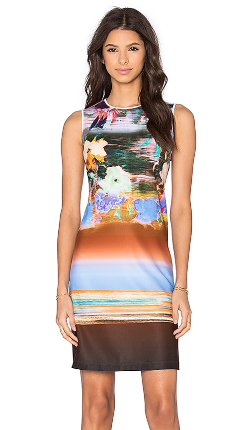 Clover Canyon Floral Whisper Dress in Multi