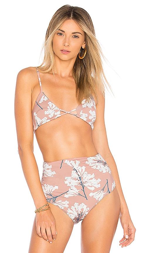 CLUBE BOSSA Apel Bikini Top in Mauve
