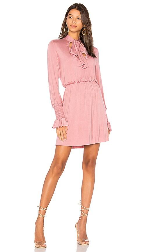 Clayton Camden Dress in Pink