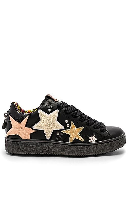 Coach 1941 C101 Star Pathes Sneaker in Black