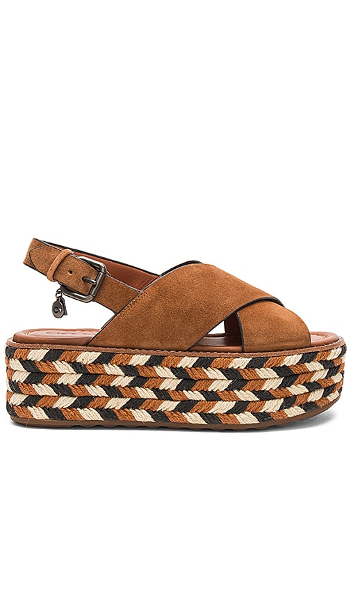 Coach 1941 Flatform Sandal in Brown