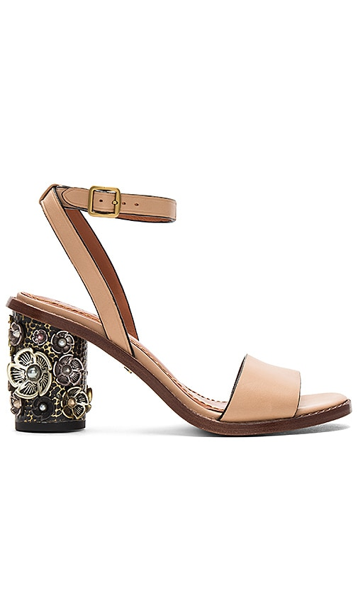 Coach 1941 Tea Rose Heel in Tan