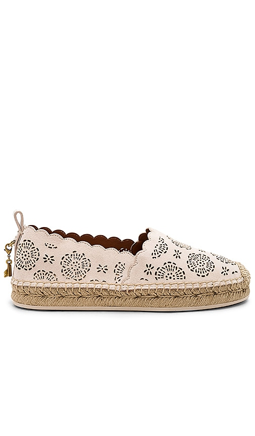 0270490ea47 Coach 1941 Tea Rose Astor Espadrille in Chalk