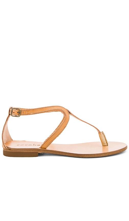 cocobelle Crete Sandal in Tan