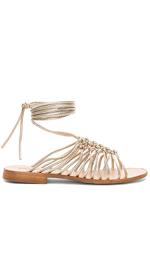 cocobelle Alexia Sandals in Metallic Gold