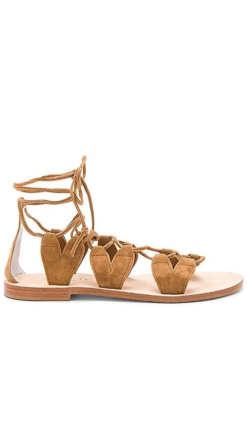 CoRNETTI Innamorati Sandal in Brown