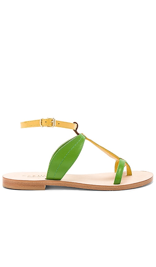 CoRNETTI Banana Sandal in Yellow