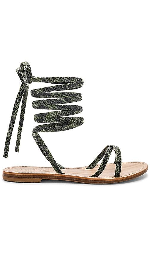CoRNETTI Vulcano Sandal in Green