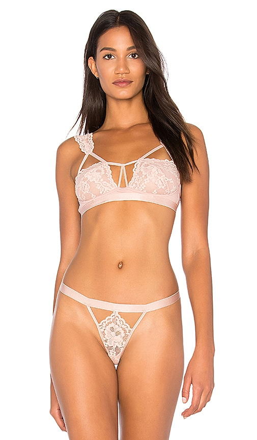 Cosabella Bisou Lace Detail Bra in Blush