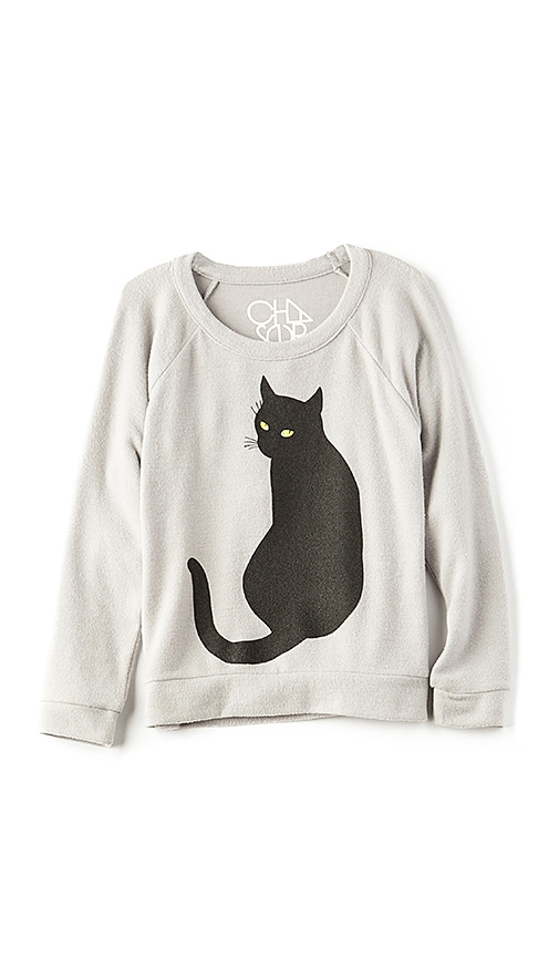 Chaser Spooky Cat Pullover in Gray