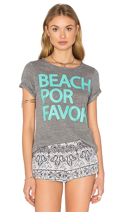 Chaser Beach Por Favor Tee in Grey