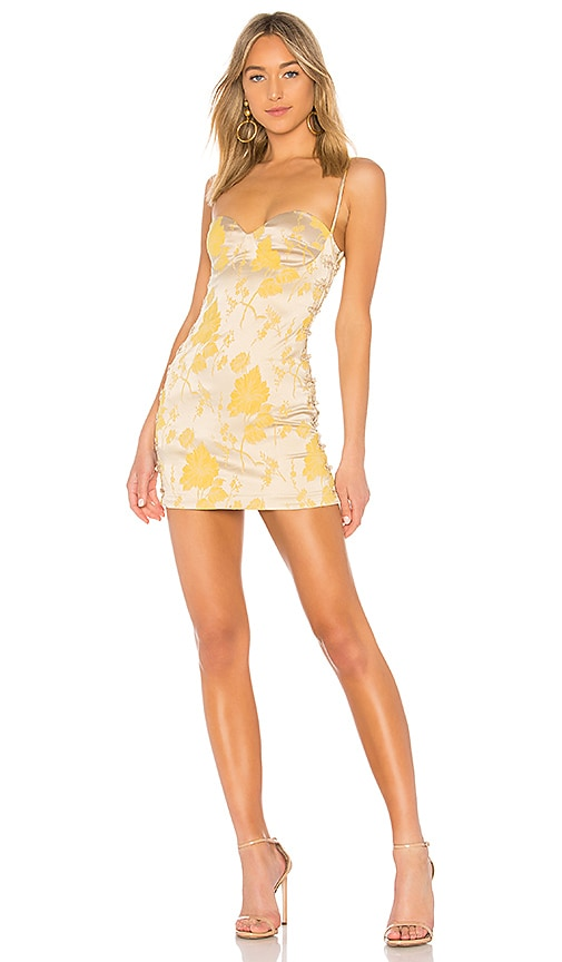 x REVOLVE Tom Kha Dress